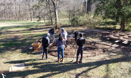 MLK Jr Day – Planting Seeds of Change