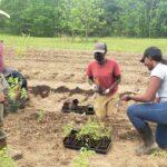 Small Farm Apprentice Program